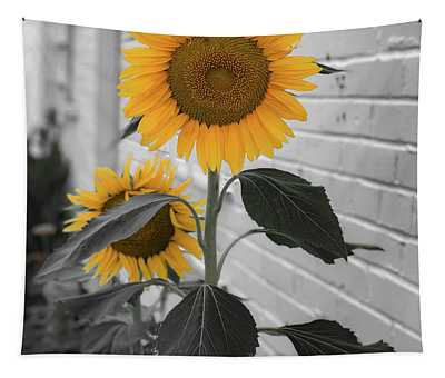 Urban Sunflower - Black And White Tapestry