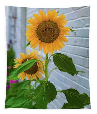Urban Sunflower Tapestry