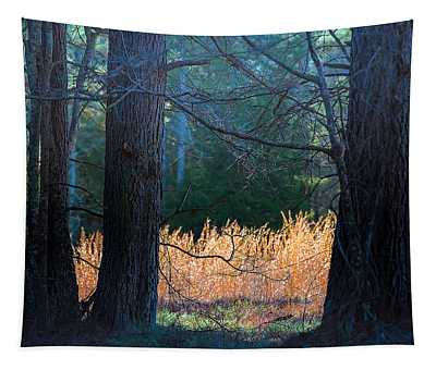 Verticals And Horizontals Tapestry