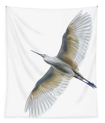View Of Dimorphic Egret Degretta Tapestry
