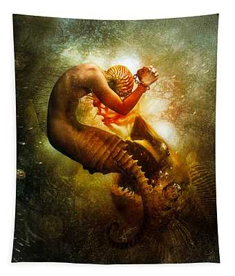 Wanderer Tapestry