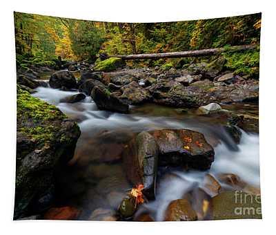 Washington Cascade Autumn Tapestry