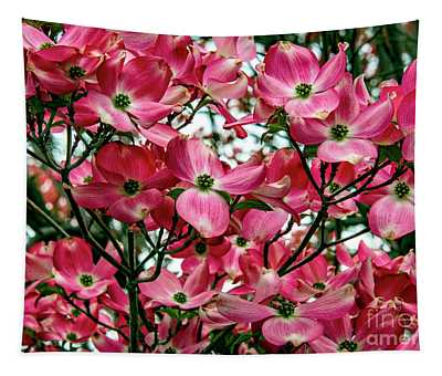 Tapestry featuring the photograph Washington State Magnolia by Mae Wertz