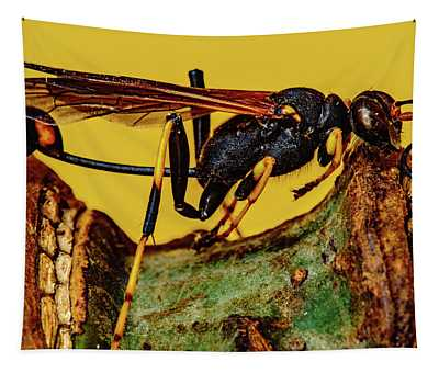Wasp Just Had Enough Tapestry