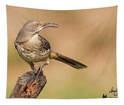 Watchful Thrasher Tapestry