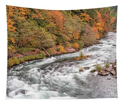 Water Colors Tapestry