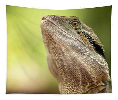 Water Dragon. Tapestry