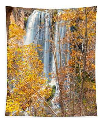 Waterfall Backdrop Tapestry