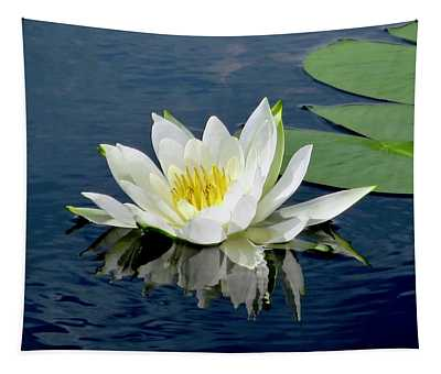 Waterlily Reflection  Tapestry