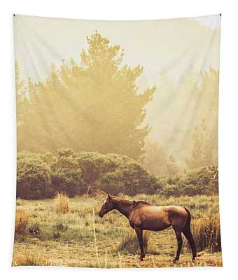 Western Ranch Horse Tapestry