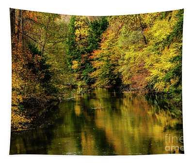 Wet Autumn Day Gauley River Tapestry