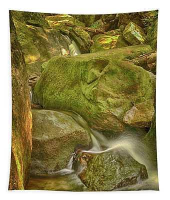 Wet Rocks Tapestry