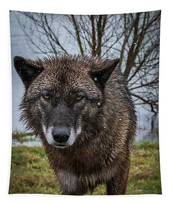 Wet Wolf Tapestry