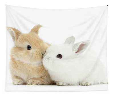 White And Sandy Love Bunnies Tapestry