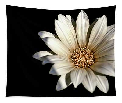 White Daisy On Black Tapestry