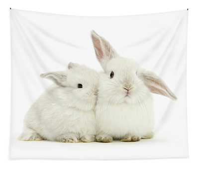 White Love Bunnies Tapestry