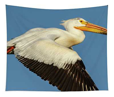 White Pelican 2014-1 Tapestry