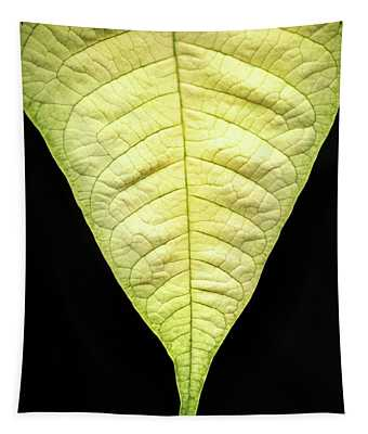 White Poinsettia Leaf Tapestry