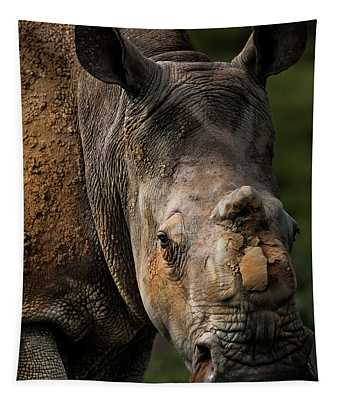 White Rhinoceros That Survived A Poacher Attack, South Africa Tapestry