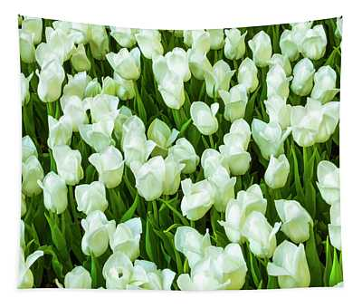 White Tulips On Green Tapestry
