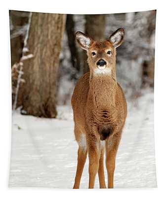 Whitetail In Snow Tapestry