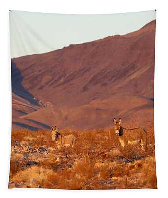 Wild Burros Tapestry