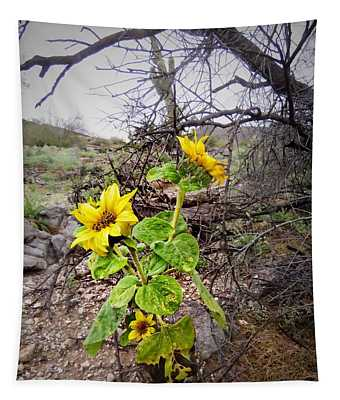 Wild Desert Sunflower Tapestry