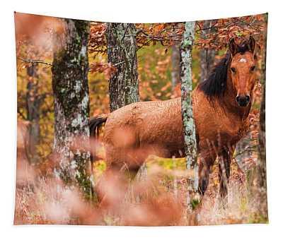 Wild Tapestry