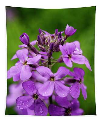 Wild Flowers In The Forest Tapestry