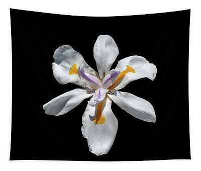 Wild Iris On Black  Tapestry