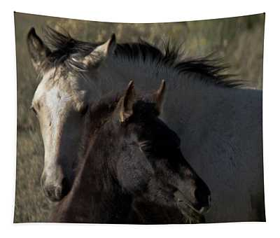 Wild Mustangs Of New Mexico 4 Tapestry