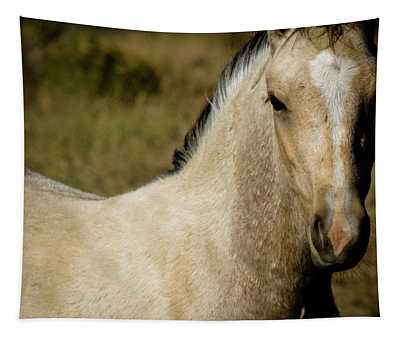 Wild Mustangs Of New Mexico 5 Tapestry