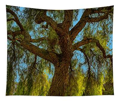 Wild Willow Tapestry