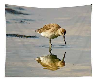 Willet Sees Its Reflection Tapestry