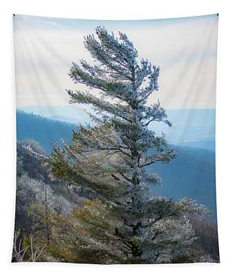 Wind Shaped Tapestry