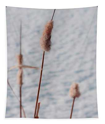 Winter Cat Tails Tapestry