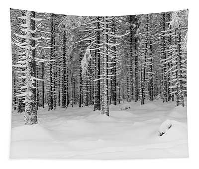 winter forest, Harz Tapestry