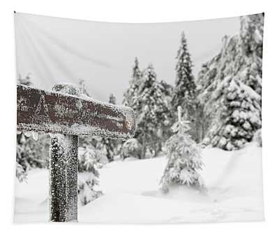 Winter Hiking In The Harz National Park Tapestry