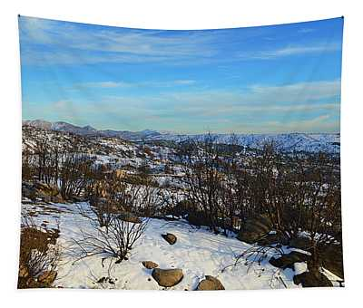 Winter Horizon Tapestry