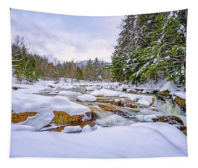 Winter On The Swift River. Tapestry
