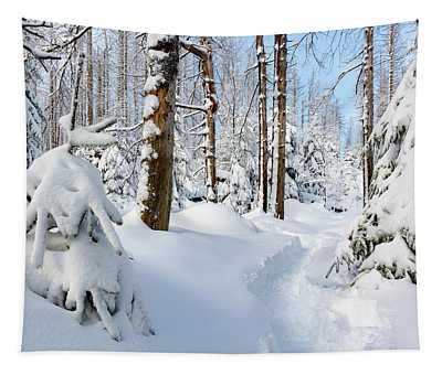 winter path, Harz Tapestry
