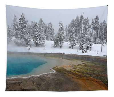 Winter Spring Tapestry