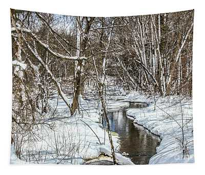 Winter Stream Tapestry
