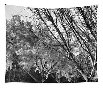 Winter Tree Leaves And Less Bw Tapestry