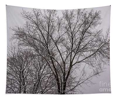 Winter Trees Tapestry