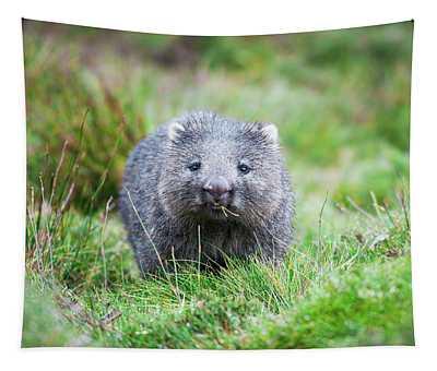 Wombat Tapestry