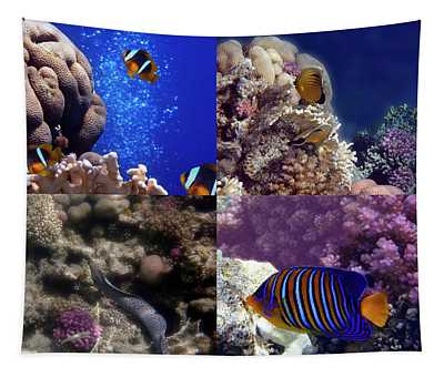 Wonderful Red Sea Sealife Collage  Tapestry