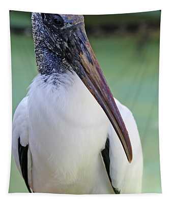 Wood Stork 40312 Tapestry