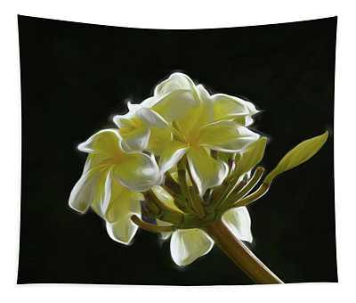 Yellow Plumeria Against Black Tapestry
