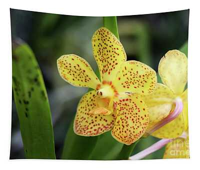 Yellow Spotted Orchids Tapestry